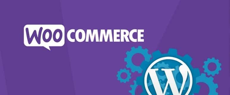 WooCommerce - Thèmes boutique en ligne