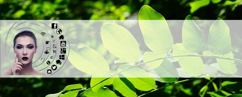 """Evergreen Content"""", comment l'exploiter dans votre stratégie de marketing digital ?"""