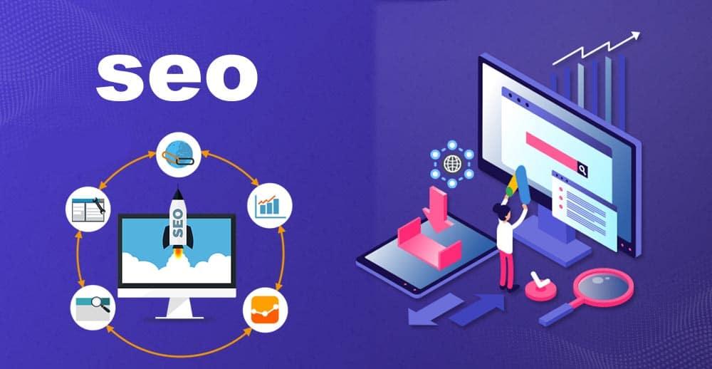 seo business site web
